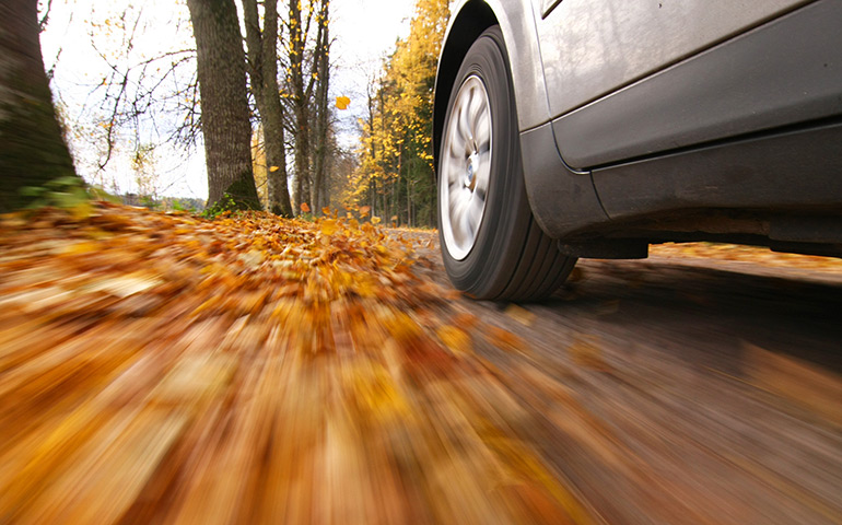 Car driving on a leave covered road - auto insurance